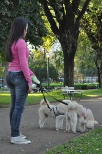 Ana Silvia Rabelo conserva hábitos saudáveis como passear com os seus cães